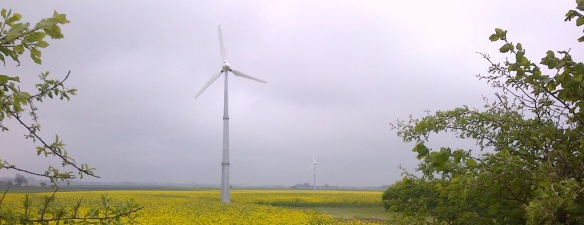 King's Lynn and West Norfolk small wind turbine large
