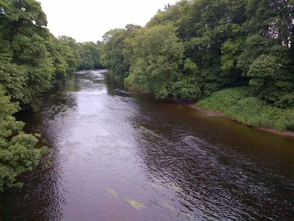 River Tees at Dinsdale Bridge